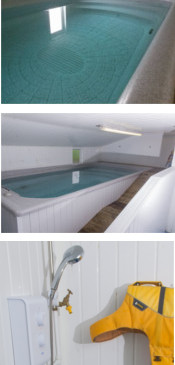 Splash - Canine Hydrotheraphy & Training Centre : Baughurst, Hampshire : Swimming Pool Facilities
